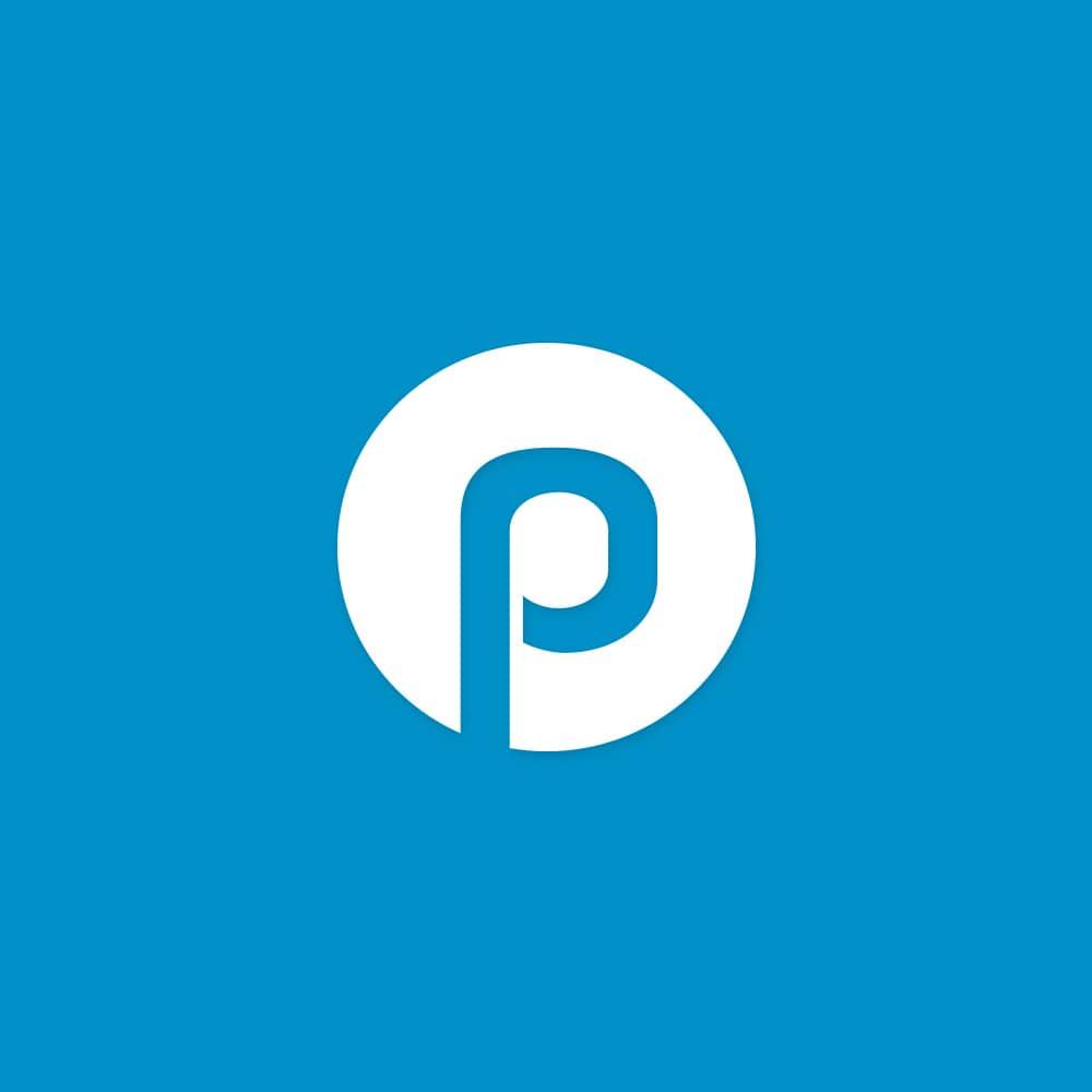 PiKSEL_primeone_Logo-Signet